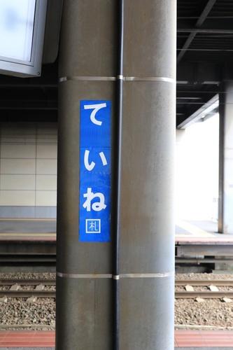 Y05A8596.jpg